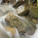Quellwasser - gesundes Wasser